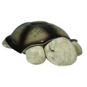 2. Cloud B Twilight Turtle Classic Night Light Soother