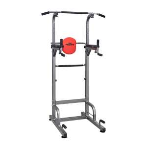 4. RELIFE REBUILD YOUR LIFE Dip Station Power Tower for Home Gym