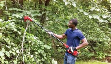 Electric Pole Saws