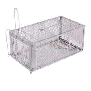 10. Wanku Large Humane Mouse Trap