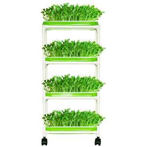 LeJoy Garden Seed Sprouter Trays with 4 Layers Shelf