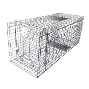 7. Gingbau Live, Collapsible Humane Animal Cage Trap