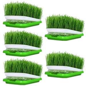 Petforu 5 Set Seed Sprouter Tray