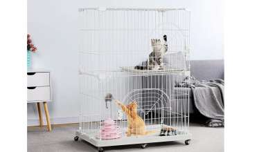 Cats Cages