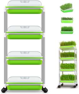 Anjoy Seed Sprouter Trays with 4-Tier Plastic Shelving
