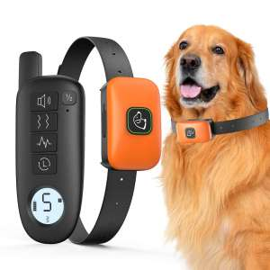 Miudani Dog Training Rechargeable Collar with Remote