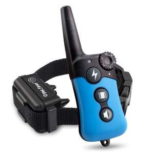 Petrainer Dog Training Collar with Remote Control