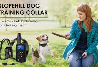 Dog Shock Collar with Remote Controller