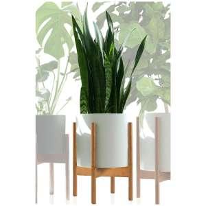 Fox & Fern Modern Plant Stand