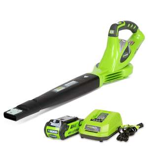 1. GreenWorks 24252 G-MAX Sweeper