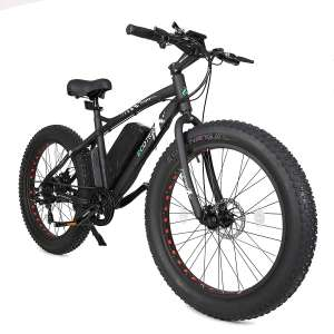 2. ECOTRIC Fat Tire Electric Bike