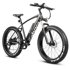 3. Eahora 4.0 Fat Tire Electric Bike