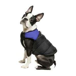Gooby Padded Dog Jacket with Zippered Closure