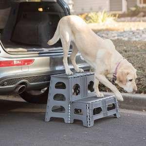 Range Kleen PetStep Folding 2-Step Ladder
