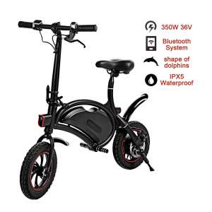 Shaofu Folding Electric Scooter with Seat 350W