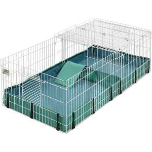 Midwest Guinea Guinea Pig Cage