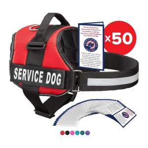 Industrial Puppy Tactical Dog Harness with Loop and Hook Straps