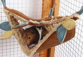Rat Hammock