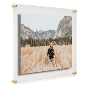 Cool Modern Frames Clear Acrylic Double Panel Picture Frame 16 x 20 Inches