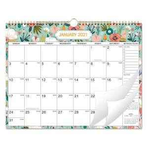 Frasukis 2021 Monthly Wall Calendar
