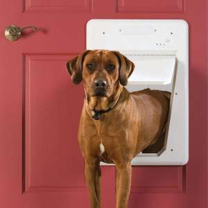 PetSafe Electronic SmartDoor (Small to Large Pets)