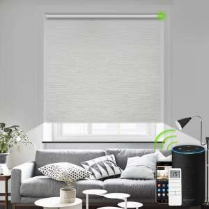 Yoolax Motorized Blind Shade for Window with Remote Control