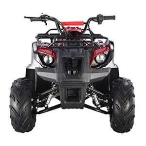TAO TAO Cheap 4-Wheel ATV