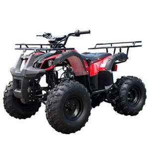 TAO 110cc with Big Rugged Wheels