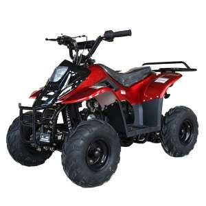 X-PRO 110cc ATV Quad Youth ATVs