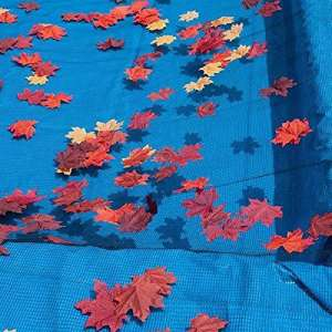 In the Swim Swimming Pool Net Cover